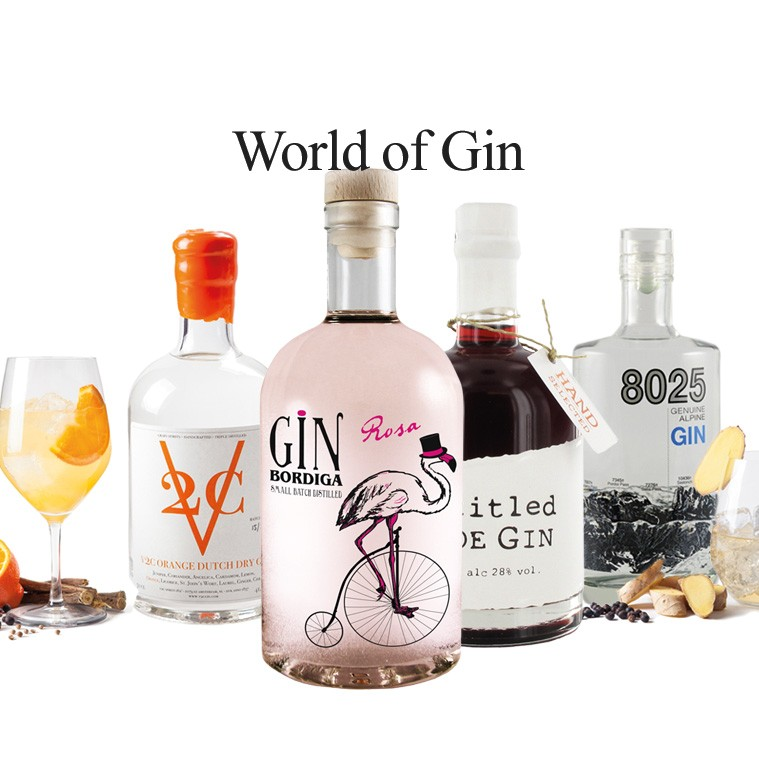 World of Gin
